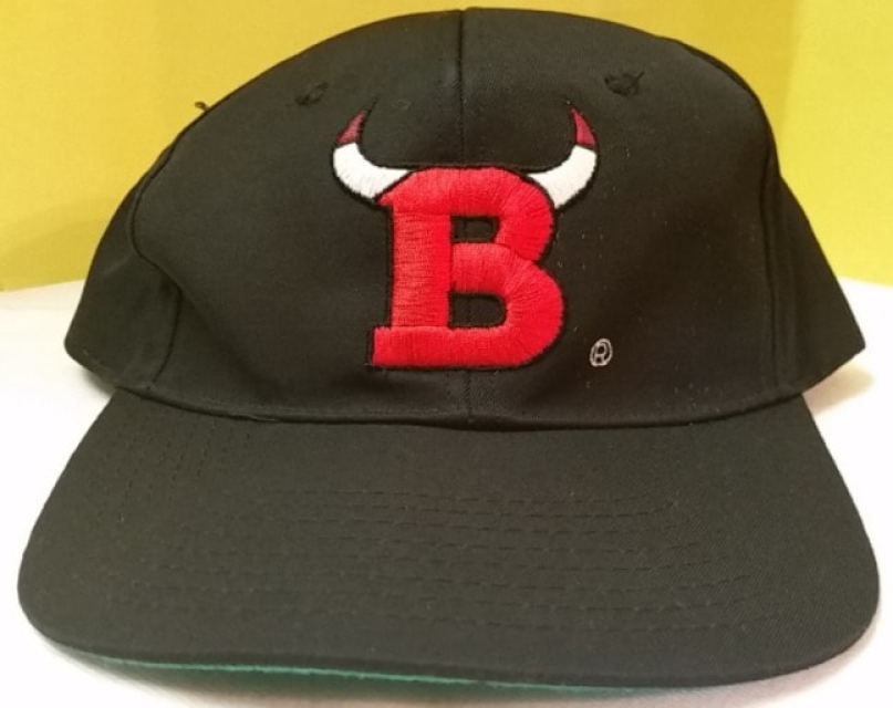 c2396813948 Pre-owned vintage 90s Chicago Bulls x Apple collaboration snapback hat.  This hat is in good condition